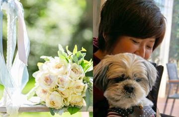 お花とわんこ
