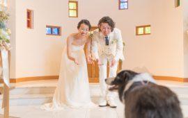 photo_gallery_wedding_021