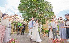 photo_gallery_wedding_027