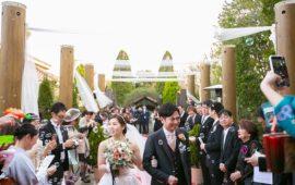 招待人数が多いほど結婚式がお得ってホント?