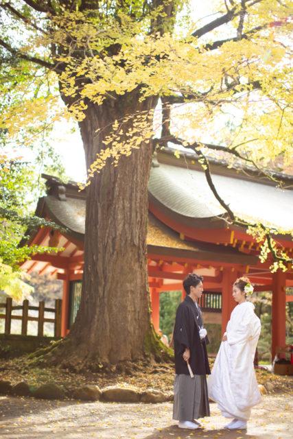 【秋婚】オータムウェディングプラン